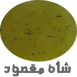 Shahmaghsood
